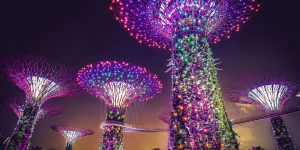 Varying Wonderful Benefits Of Living In Singapore For The Longterm